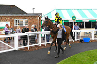 Winner of The Smith & Williamson Fillies' Novice Stakes (Div 1) Motivate Me ridden by Jack Mitchell and trained by Roger Varian  is led into the Winners enclosure during Afternoon Racing at Salisbury Racecourse on 16th May 2019