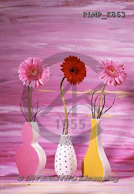 Marek, FLOWERS, BLUMEN, FLORES, photos+++++,PLMPK863,#f#