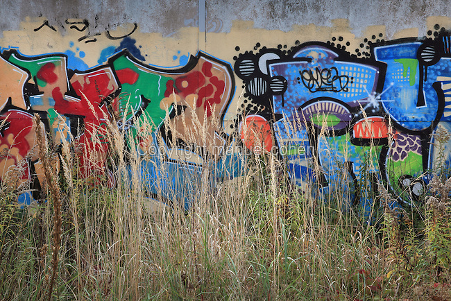 Graffiti on a section of wall with wild grassland at the Nordbahnhof Park, begun 2004, Mitte, Berlin, Germany. In the Ackerstrasse area, an old railway station, the Berlin wall site and urban wasteland has been transformed into a park area with streetball pitch, sunbathing hammocks, meadows, pathways and a birch wood. Picture by Manuel Cohen