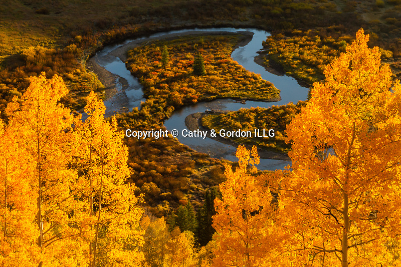 North America, USA, Colorado, Gunnison National Forest. Autumn on the East River.