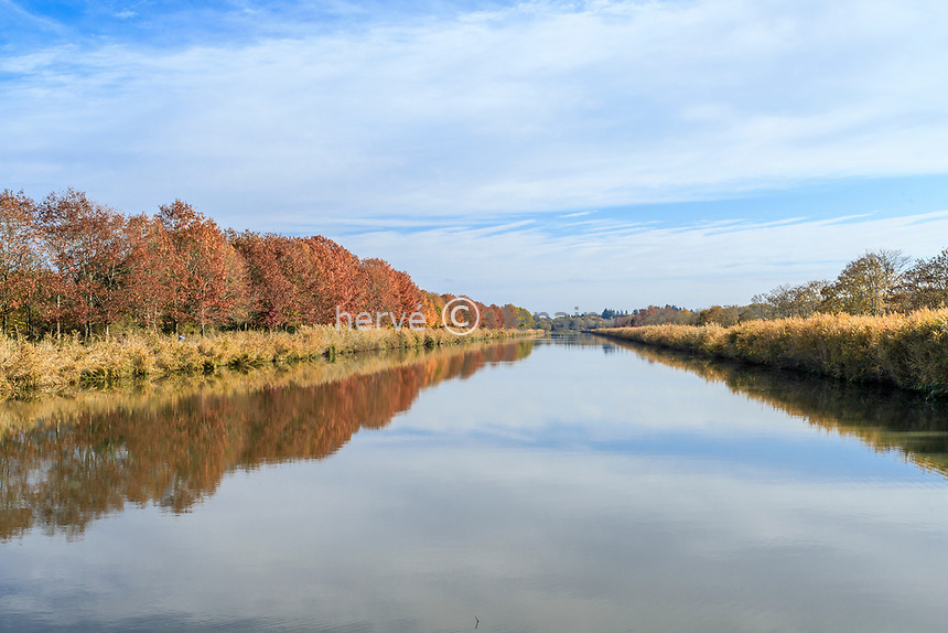 France, Loire-et-Cher (41), Chambord, château de Chambord, le Cosson canalisé à l'est du château