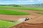 A farmer pulls a tiller along a hill near Almota Grade, southwest of Colfax, Washington, in the Palouse Country. Farmers in the Palouse use dry land farming techniques and depend on only the rain to nourish their crops of wheat, barley, mustard, beans, canola and other grains.