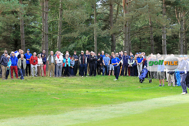 Bradley Neil (SCO) on the 16th hole during Day 2 Singles for the Junior Ryder Cup 2014 at Blairgowrie Golf Club on Tuesday 23rd September 2014.<br /> Picture:  Thos Caffrey / www.golffile.ie