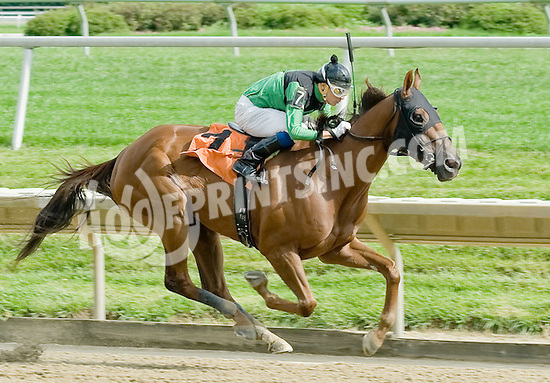 Palo Duro Canyon winning at Delaware Park on 9/19/11