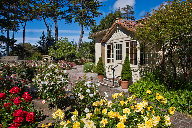 The ROSE GARDEN at LA MIRADA Museum of Art - Monterey, California