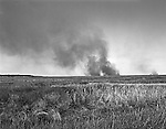 Fires occasionally roll over the vast salt marshes of the Cedar Island National Wildlife Refuge.  it's a natural part of the marsh ecosystem, and the refuge managers set fires to emulate nature.  Cedar Island's prairie-like marshes are some of the most extensive along the East Coast.