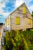 Abaco Past an interpretation for Canvas/Canvas Wrap or Matte print.<br /> Image DETAIL: http://www.petersongallery.com/image/I0000TRFQm3v_wjQ