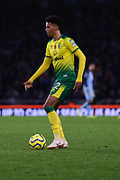 Jamal Lewis of Norwich City during Brighton & Hove Albion vs Norwich City, Premier League Football at the American Express Community Stadium on 2nd November 2019