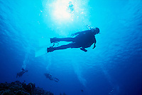 DIVERS<br /> Diver surfacing<br /> Silhouetted against sun with divers in background