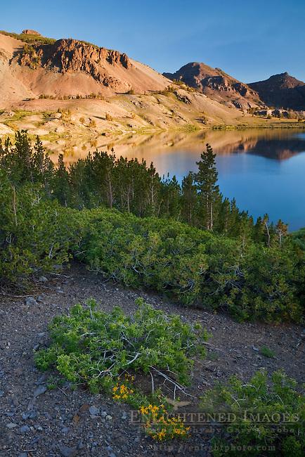 Leavitt Lake, Toiyabe Natilonal Forest, Mono County, California