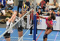 Beker van Belgi&euml;<br /> Black and White Company Lendelede - VC Oudegem :<br /> smash van Yasmine Vleminckx (R) op het blok van Lendelede<br /> <br /> Foto VDB / Bart Vandenbroucke
