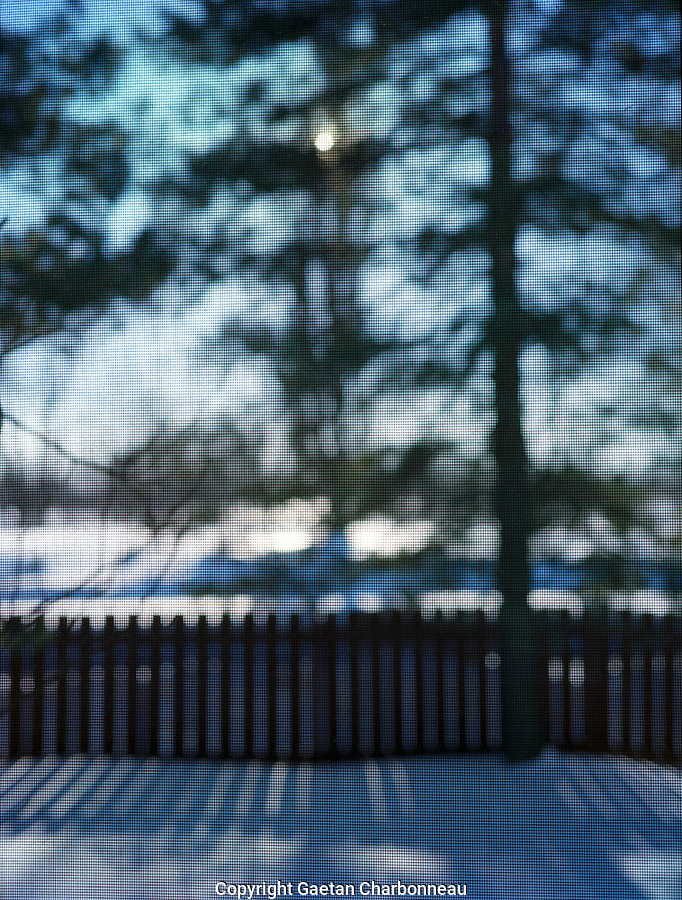 Snow, fence and trees viewed through screen, winter, (focus on screen)