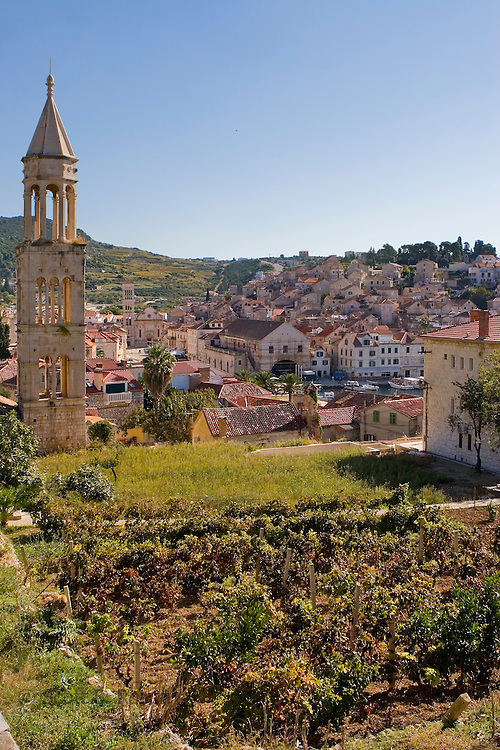 View of Havar Town, overlooking a family garden, Hvar Island, Croatia