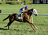 Fifth District winning at Delaware Park on 10/11/12