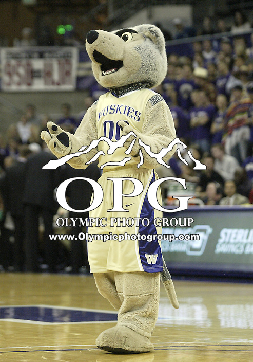 02 January 2010:  Washington Huskies mascot Harry entertained the crowed during a timeout against Oregon. Oregon won 90-79 over  Washington at the Bank of America Arena in Seattle, WA.