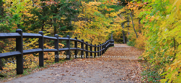 A fence and colorful tree lined path in autumn leading down to the falls, Tahquamenon Falls Michigan, Upper Peninsula, USA