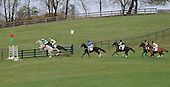 Won Wild Bird (gray) and Sand Box Rules lead early in the Hunt Cup.