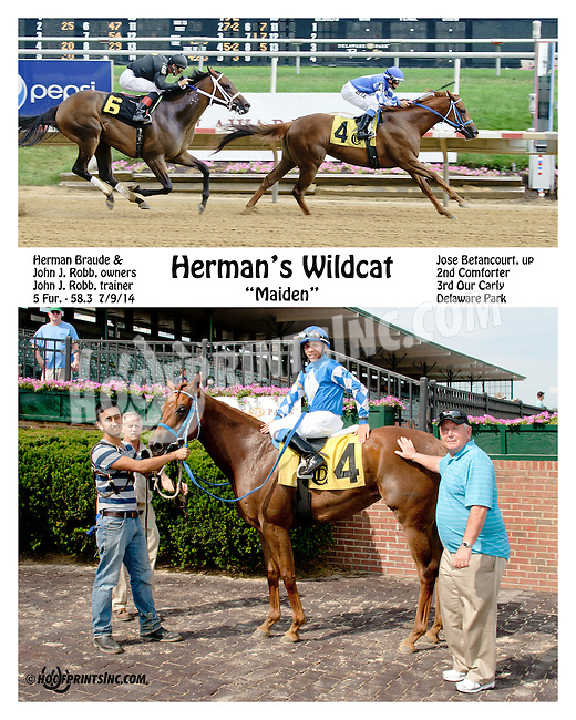 Herman's Wildcat winning at Delaware Park on 7/9/14