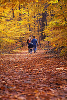 Hiking on a autumn path.
