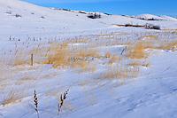 Winter landscape in Qu' Appelle Valley<br /> near Craven <br /> Saskatchewan<br /> Canada