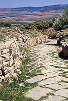 Tunisia, Dougga.  Roman Ruins.  Roman Street.