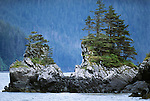 Coastal landscape, Tongass National Forest, Alaska, USA