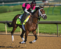 Palace Malice, trained by Todd Pletcher, during morning workouts for the Kentucky Derby at Churchill Downs in Louisville, Kentucky on April 30, 2013.
