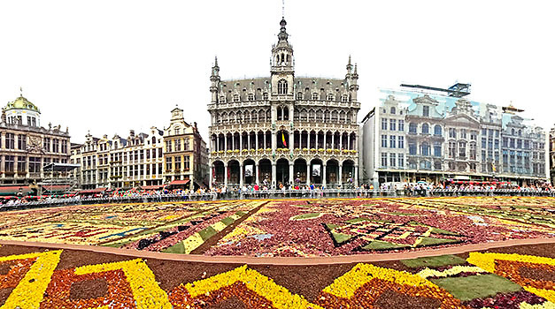 Flower Carpet Festival 2012, Grand Place, Brussels