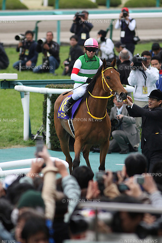 Harp Star (Yuga Kawada),<br /> APRIL 13, 2014 - Horse Racing :<br /> Harp Star ridden by Yuga Kawada after winning the Oka Sho (Japanese 1000 Guineas) at Hanshin Racecourse in Hyogo, Japan. (Photo by Eiichi Yamane/AFLO)