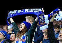 Sheffield Wednesday fans celebrate after Kieran Lee of Sheffield Wednesday goal during the Sky Bet Championship match between Sheffield Wednesday and Nottingham Forest at Hillsborough, Sheffield, England on 9 September 2017. Photo by Leila Coker / PRiME Media Images.