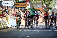 Green Jersey Peter Sagan (SVK/Bora Hansgrohe) wins the bunch sprint in Colmar.  Wout Van Aert (BEL/Jumbo Visma) finishing a very strong 2nd place. <br /> <br /> Stage 5: Saint-Dié-des-Vosges to Colmar (175km)<br /> 106th Tour de France 2019 (2.UWT)<br /> <br /> ©kramon
