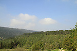 Israel, Segev forest in the Lower Galilee