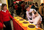 Pet food samples dog trying different bowls of food. Promotion at Crufts Dog Show National Exhibition Centre Birmingham 1991 1990s <br />