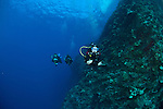 Divers on a drift dive at the backwall Molokini Maui Hawaii.Over 150 feet visibility.