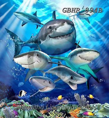 Howard, SELFIES, paintings+++++,GBHR894B,#Selfies#, EVERYDAY ,sharks,maritime