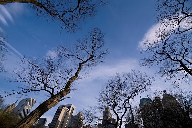 Central Park, Manhattan, New York City, Spring 2009