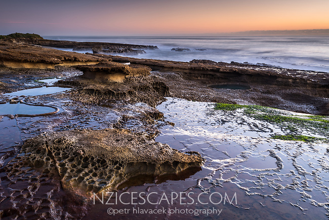 Limestone rocks with water reflections and green seaweed on Truman Track under sunset in Punakaiki, Paparoa National Park, West Coast, New Zealand