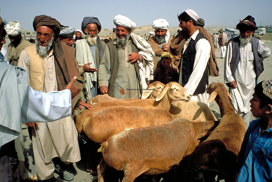 Buyers and sellers at cattle market