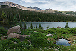 south face of Longs Peak, Thunder Lake, shore, subalpine forest, summer, Rocky Mountain National Park, Colorado, USA, Rocky Mountains