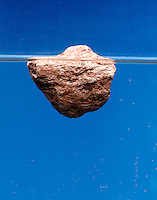 PUMICE FLOATS IN WATER<br />