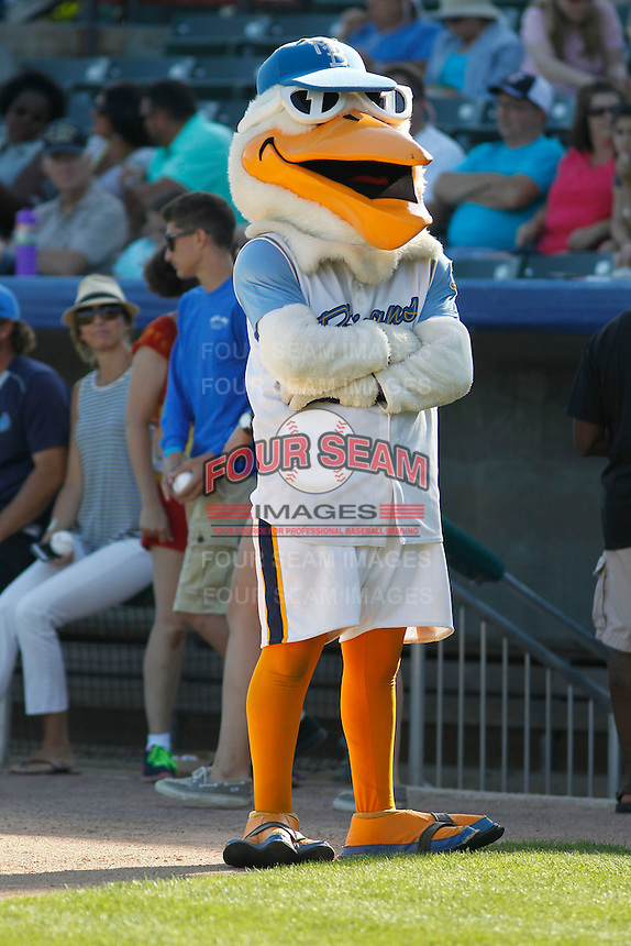 Myrtle Beach Pelicans mascot Splash Pelican (50) entertaining the fans before a game against the Potomac Nationals at Ticketreturn.com Field at Pelicans Ballpark on May 24, 2015 in Myrtle Beach, South Carolina. Potomac defeated Myrtle Beach 1-0. (Robert Gurganus/Four Seam Images)