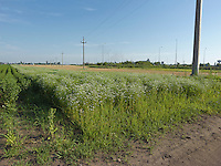 AG_LOCATION_65058