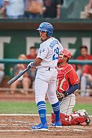 Jefrey Souffront (29) of the Ogden Raptors bats against the Orem Owlz at Lindquist Field on August 4, 2018 in Ogden, Utah. The Owlz defeated the Raptors 15-12. (Stephen Smith/Four Seam Images)