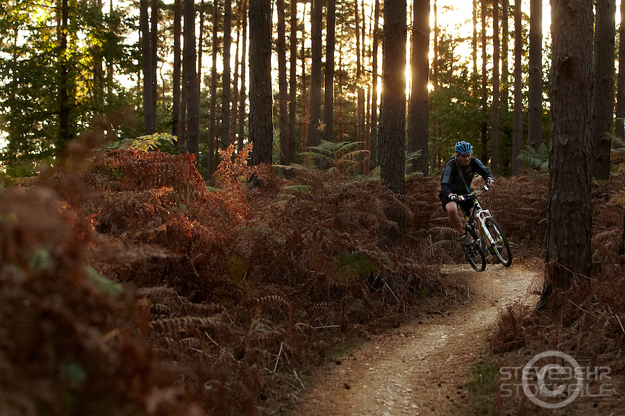 John Nicol riding Cube mountain bike , Swinley Forest , Bracknell , Berks    October 2011 pic copyright Steve Behr / Stockfile