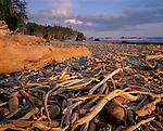 Olympic National Park, WA: Weathered driftwood scattered among the rocks of Ruby Beach