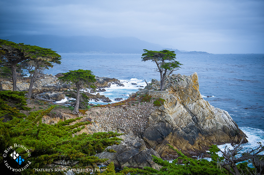 A storm rolls in over the Lone Cypress in Carmel, California