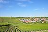 Blick auf Ensheim umgeben von Weinbergen mit Windrädern auf dem Hügel