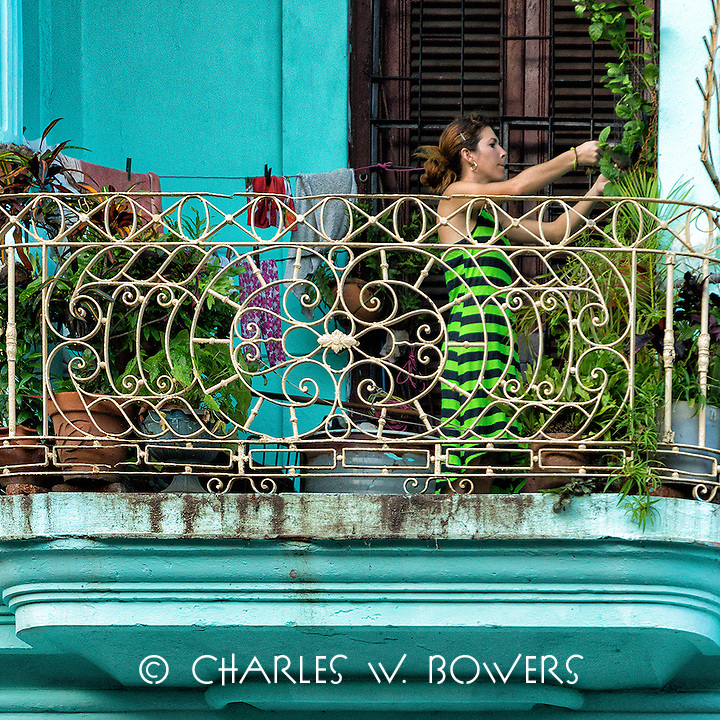 Faces Of Cuba - I love my balcony garden.<br />
