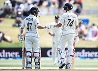 24th November 2019; Mt Maunganui, New Zealand;  BJ Watling and Mitchell Santner partnership batting on day 4 of the 1st international cricket test match, New Zealand versus England at Bay Oval, Mt Maunganui, New Zealand.  - Editorial Use