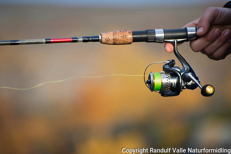 Mann fisker med haspelutstyr. ---- Man fishing.